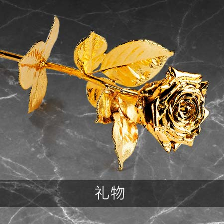 450×450-degussa-goldhandel-goldgeschenke-cn